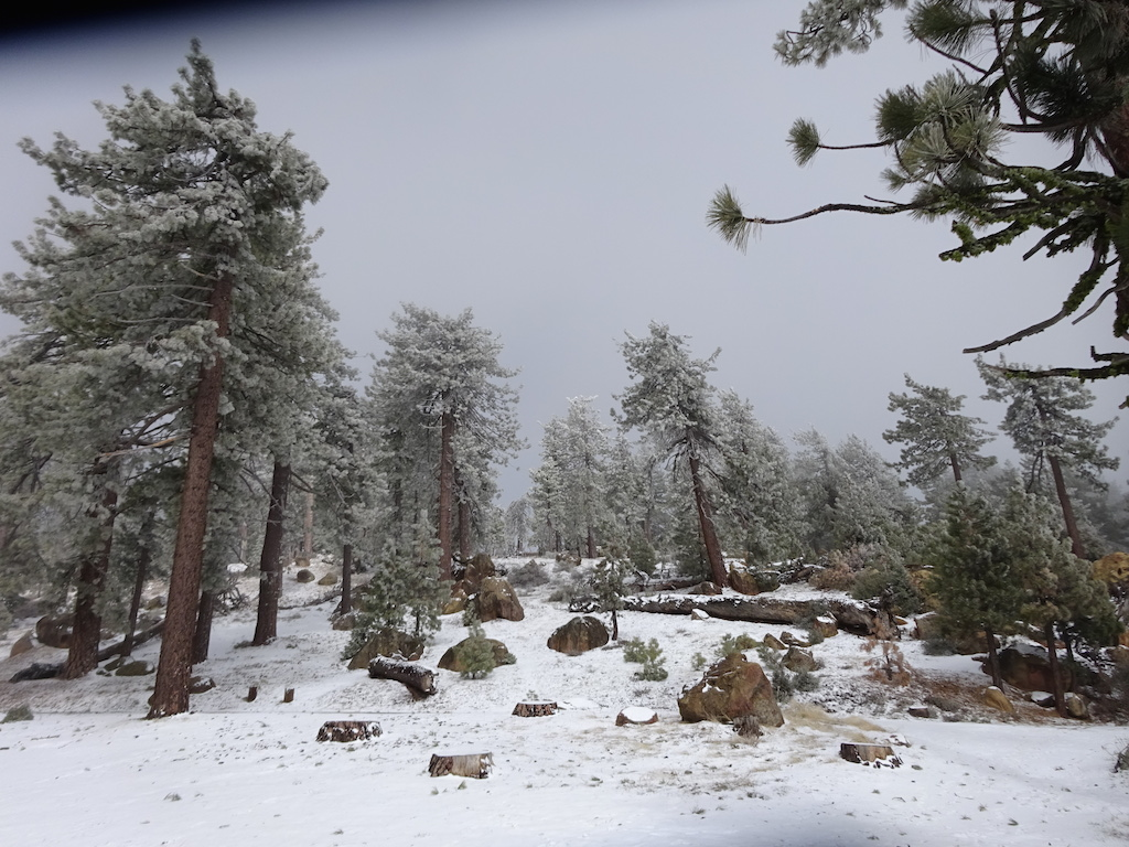 Reyes Campground in the snow