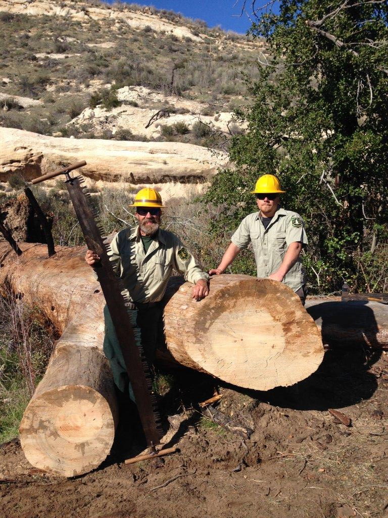 Men with saws and logs on Happy Hunting Ground work trip