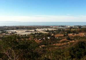 View of Carpinteria from Franklin Trail